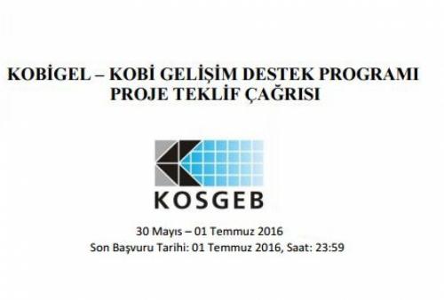 Bilişim Teknolojileri KOBİ'lerine KOSGEB Desteği